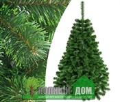 Ель с зелеными концами (1-2,5 метра)