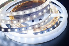 Лента светодиодная ECO-3528/120 (5 м, яркий холодный белый, IP65), JAZZWAY