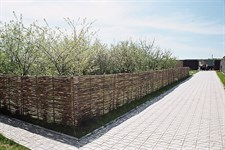 Забор (плетень) из орешника 200х120 см