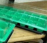 Мини-парник пластмассовый, 36 ячеек 525х160мм, яч. 38x38x45 мм