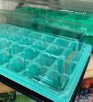 Мини-парник пластмассовый, 56 ячеек 525х160мм, яч. 31x31x45 мм
